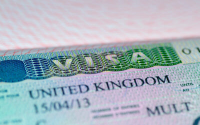 Tier 1 Entrepreneur Visa Alternatives: Start-up and Innovator Visa Categories